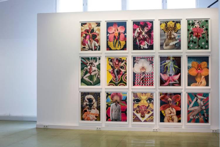 Terra Incognita, Hilger Brotkunsthalle, Vienna, Arndt Art Agency, Installation view 14